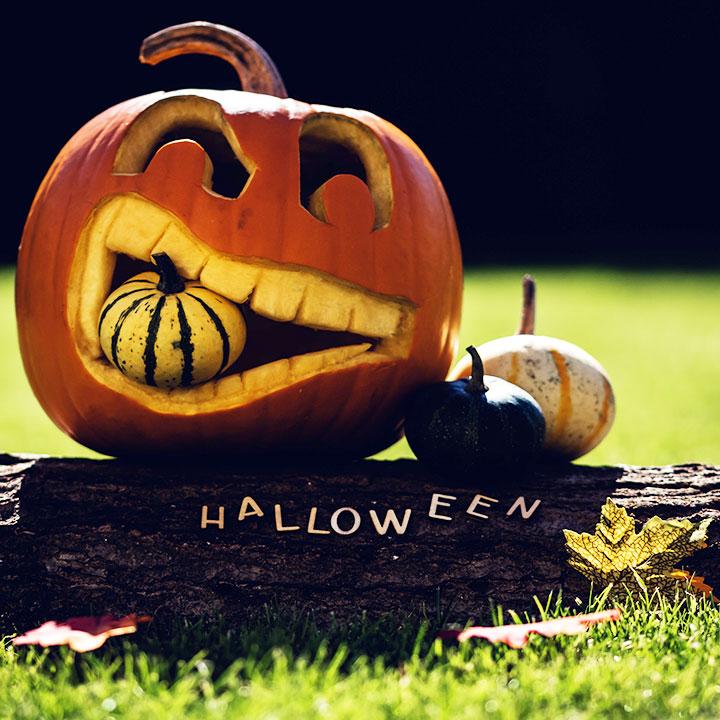 Last-minute Halloweenkostuums